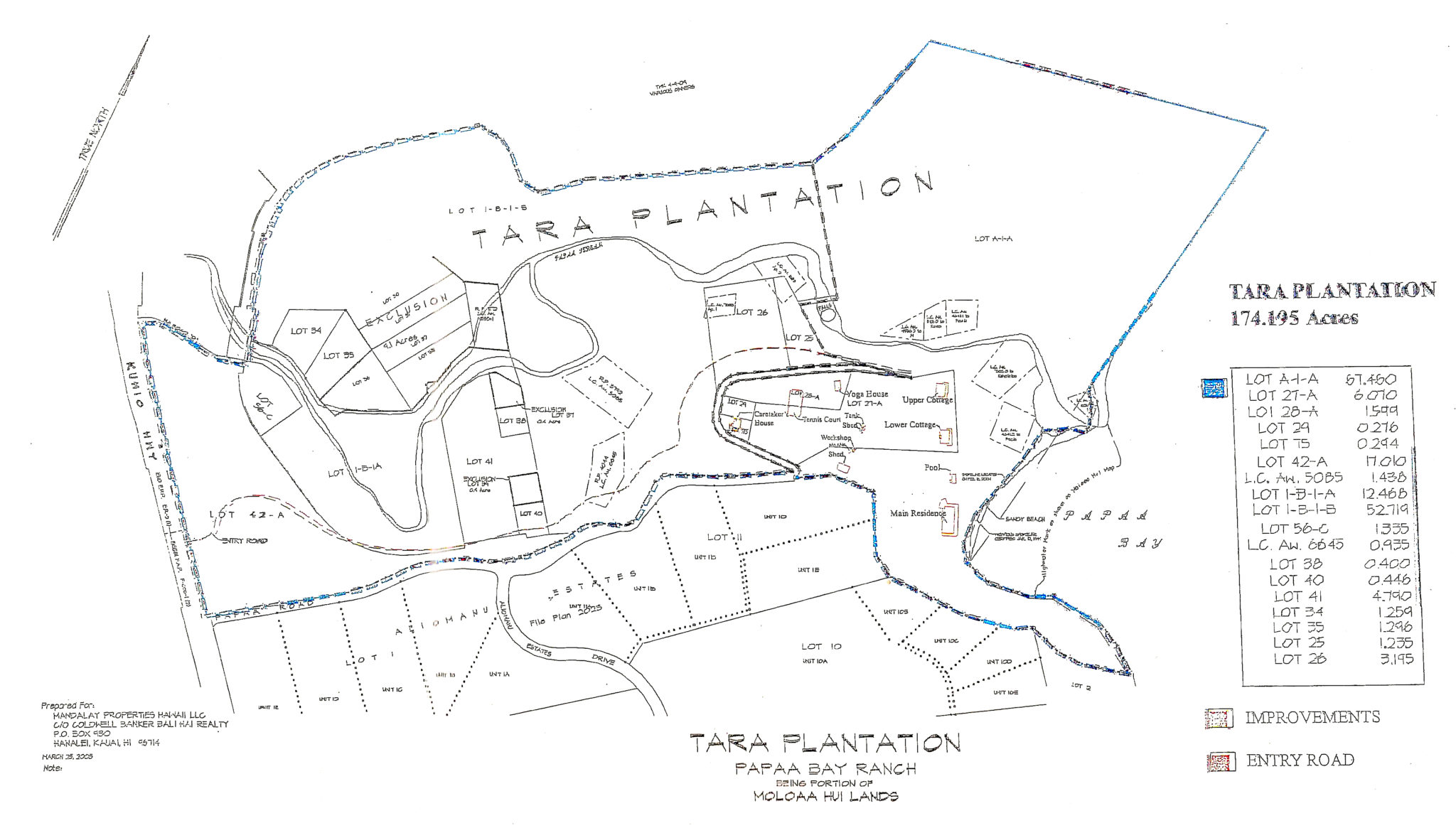 Trigg Smith Tara Plantation Brochure-Plan Lots